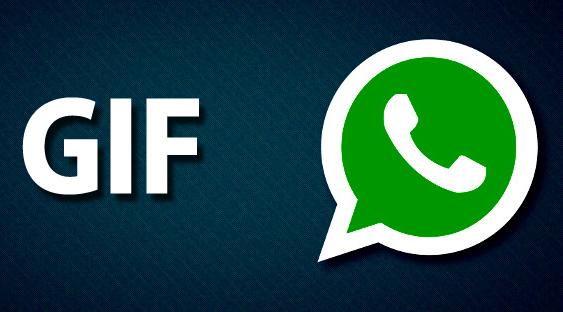 WhatsApp'ın yeni sürümünde GIF Yapma ve Paylaşma özelliği geldi.