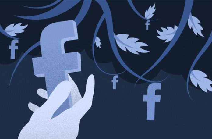 Renkler Facebook'un görsel imajına oldukça büyük katkı sağlayacak