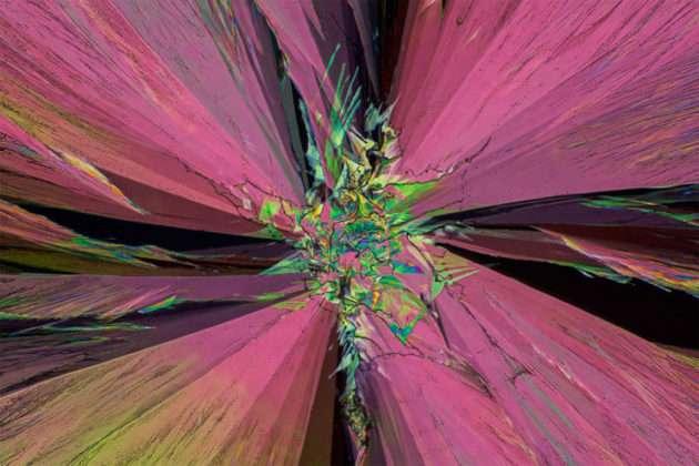 Peter Juzak yıllardır medikal malzemelerden resimler yapıyor