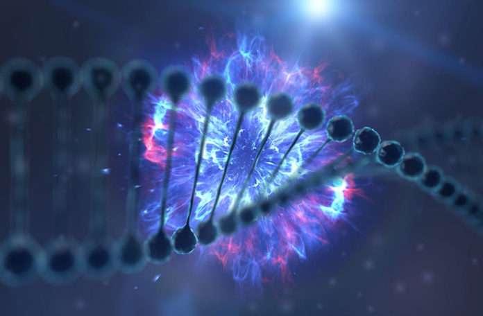 Bilim adamları verileri DNA'da depolayarak organik bir hard disk oluşturuyor