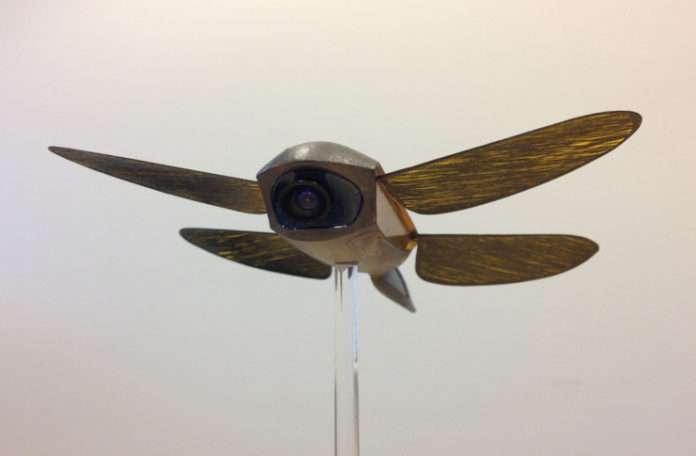 Animal Dynamics yusufçuk böceğinin kanat çırpışından esinlenerek kanatlı bir mikrodrone