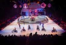 'Ringling Bros. and Barnum&Bailey Circus'