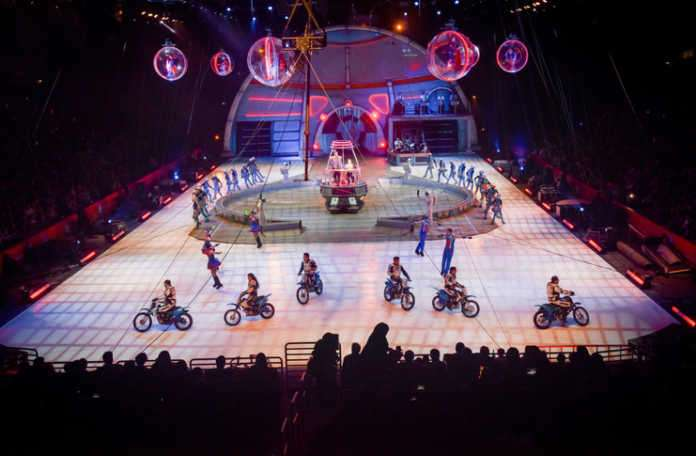 'Ringling Bros. and Barnum&Bailey Circus'