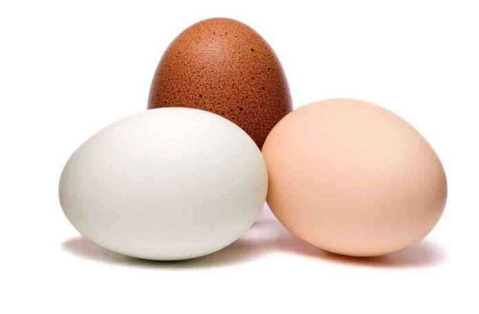 Günde bir yumurta yemesinin çocukların gelişimine katkısı büyük
