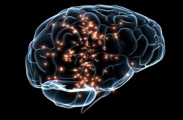 İnsan beyninin kokuyu nasıl algıladığına dair yeni keşifler