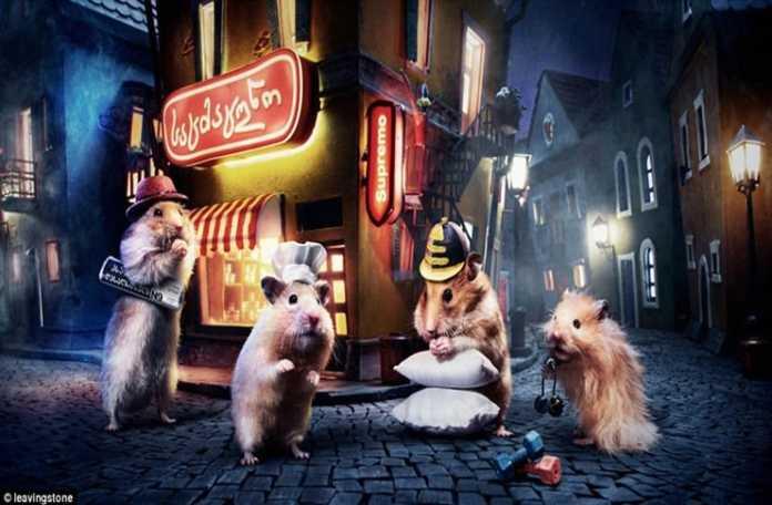 Hamster köyü kurmak için 1325 detay üzerinde çalıştılar