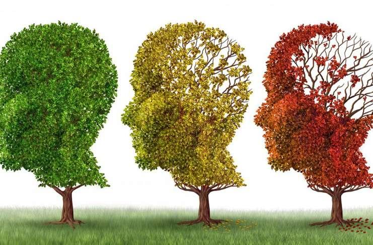 Alzheimer, Parkinson ve Huntington Hastalıkları Arasında Bağlantı Var mı?