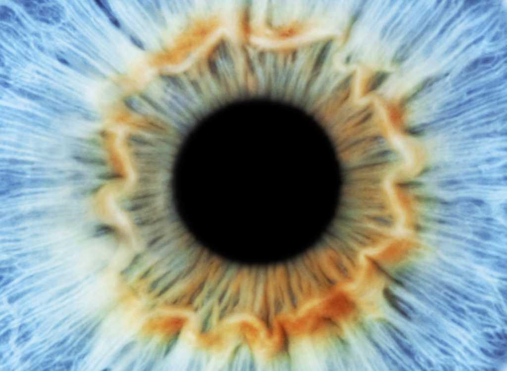 Akıllı iris, ışığı kendisi ayarlıyor