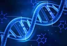 Kanser Genetik düzenleme teknolojisi, gelecekte antibiyotikleri değiştirebilir birbiriyle etkileşim kuruyor