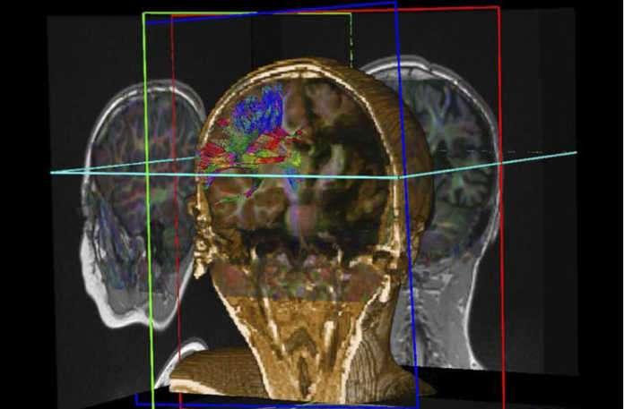 Bilimsel vücut haritalamanın ne olduğunu biliyor musunuz?